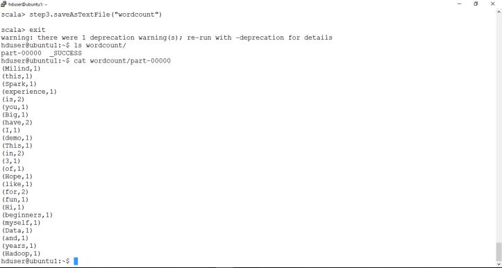 final wordcount output