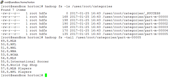 HDFS Output Directory