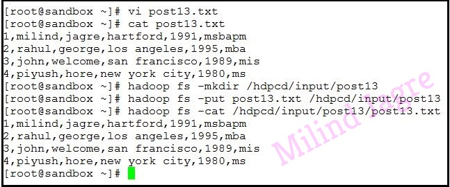 input file content