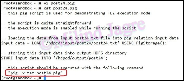 Step 3: Creating the pig script to run in TEZ mode