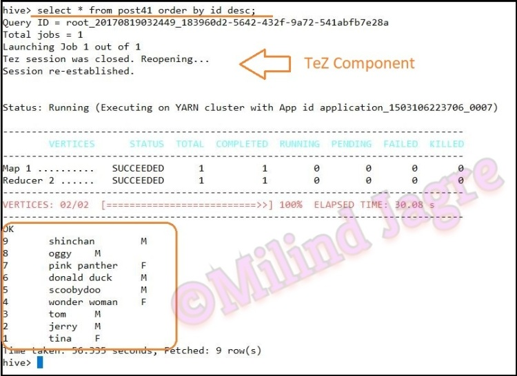 Step 5: Confirming the execution engine was changed to TeZ